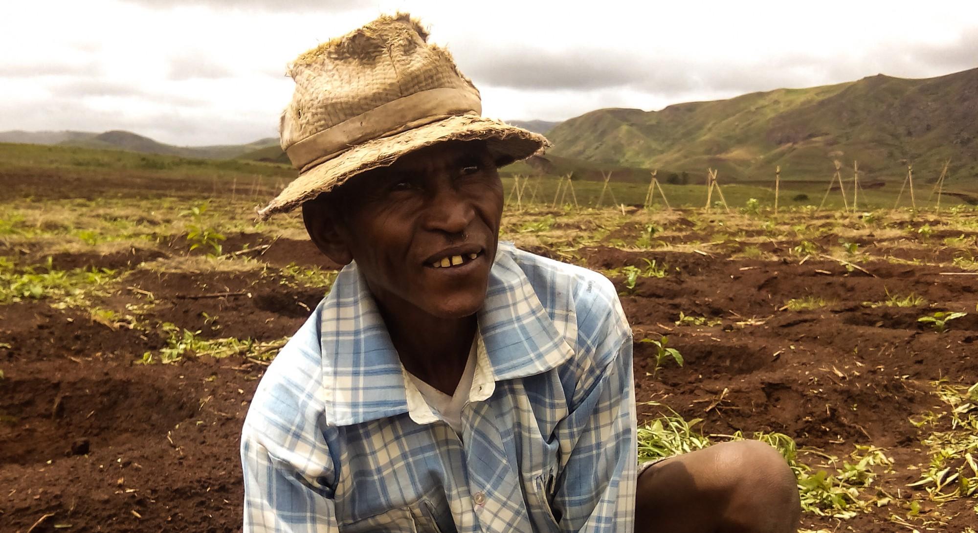 Zebu Coffee Estate – Exclusive Arabica Coffee from Madagascar